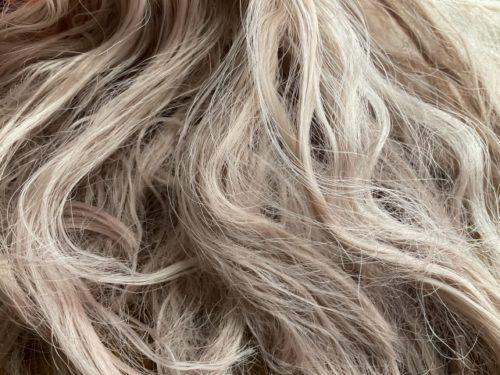 たつの市 白髪染め画像